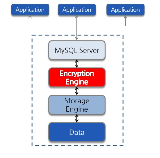 diagram shows engine-level-encryption in the DBMS process